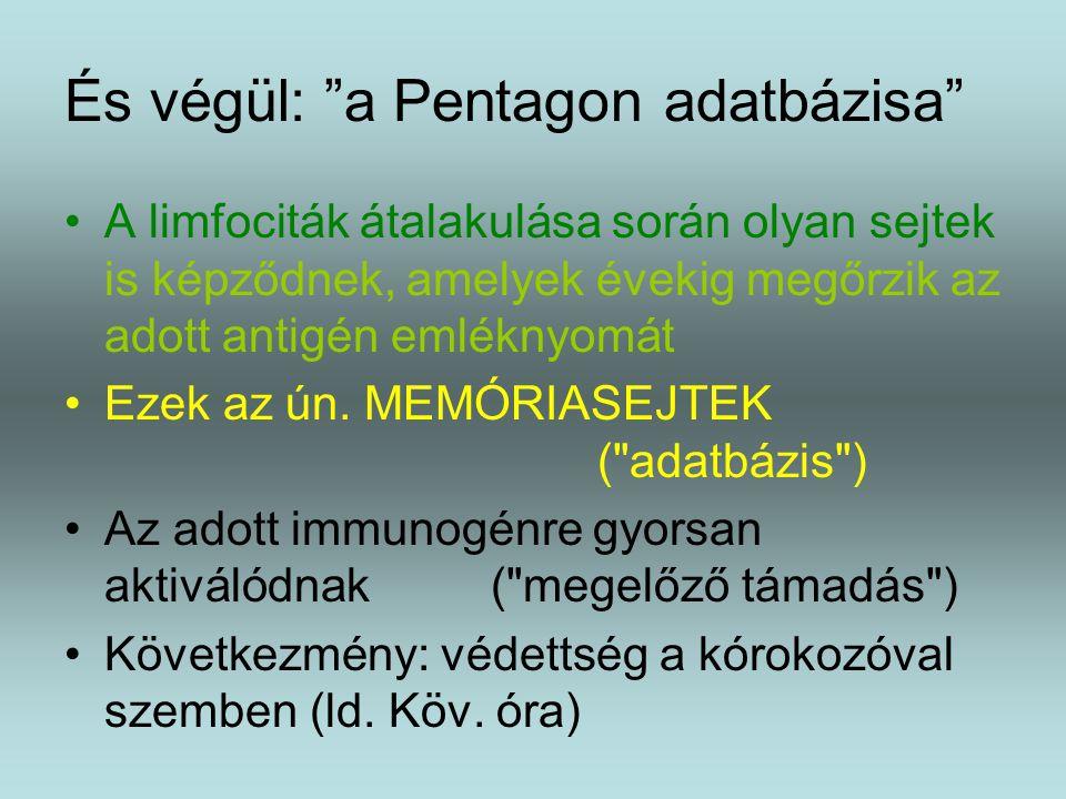 És végül: a Pentagon adatbázisa A limfociták átalakulása során olyan sejtek is képződnek, amelyek évekig megőrzik az adott antigén emléknyomát Ezek az ún.
