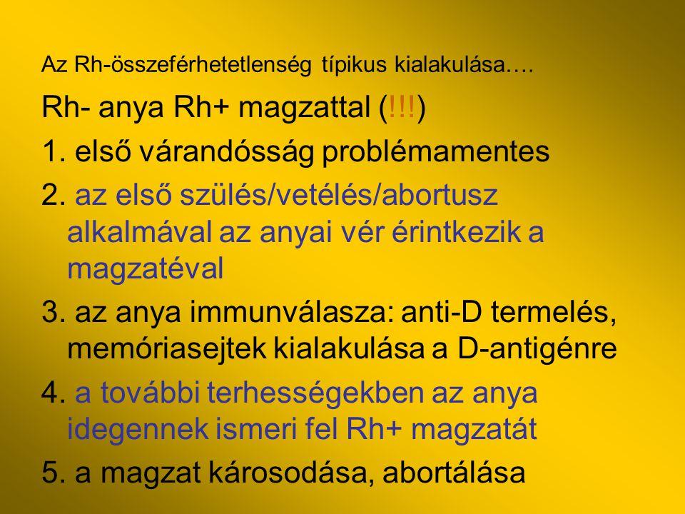 Az Rh-összeférhetetlenség típikus kialakulása…. Rh- anya Rh+ magzattal (!!!) 1. első várandósság problémamentes 2. az első szülés/vetélés/abortusz alk