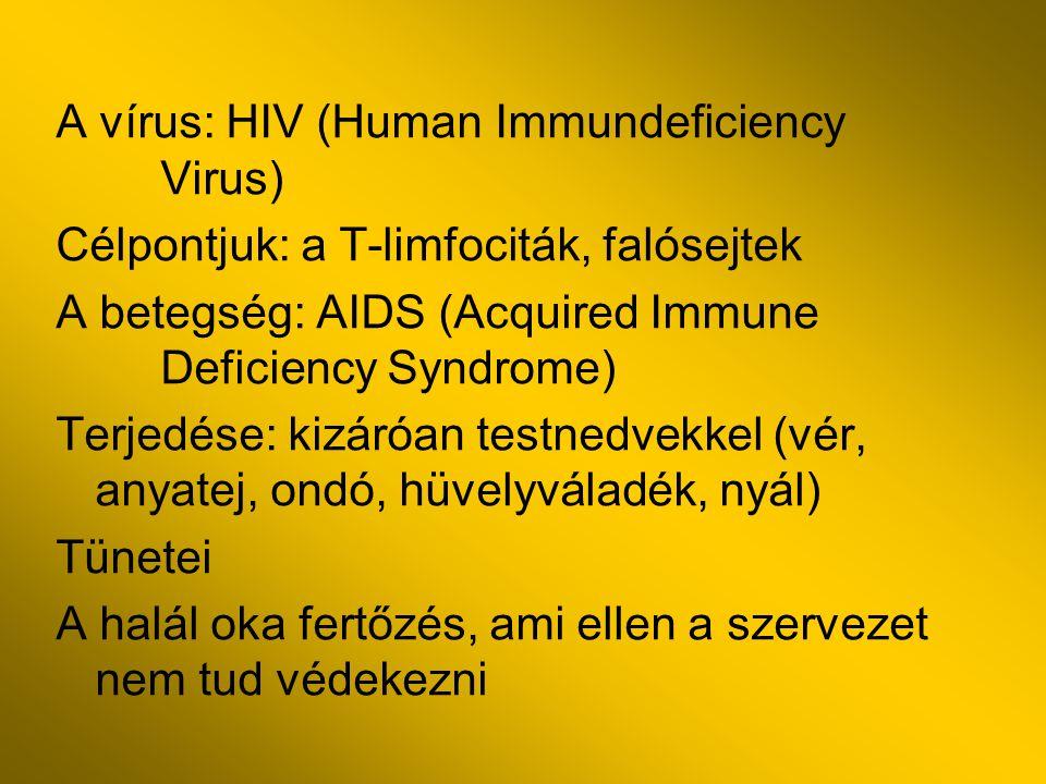 A vírus: HIV (Human Immundeficiency Virus) Célpontjuk: a T-limfociták, falósejtek A betegség: AIDS (Acquired Immune Deficiency Syndrome) Terjedése: ki