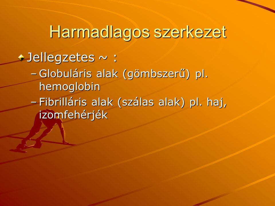 Harmadlagos szerkezet Jellegzetes ~ : –Globuláris alak (gömbszerű) pl. hemoglobin –Fibrilláris alak (szálas alak) pl. haj, izomfehérjék