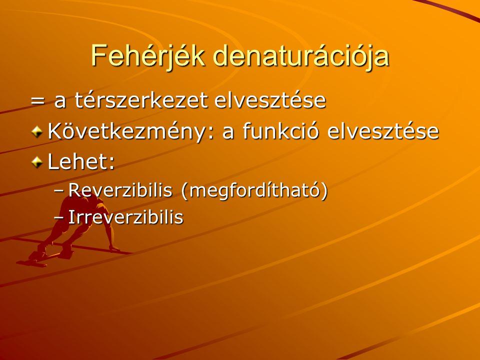 Fehérjék denaturációja = a térszerkezet elvesztése Következmény: a funkció elvesztése Lehet: –Reverzibilis (megfordítható) –Irreverzibilis
