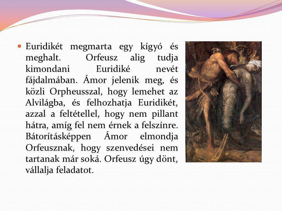 Euridikét megmarta egy kígyó és meghalt. Orfeusz alig tudja kimondani Euridiké nevét fájdalmában. Ámor jelenik meg, és közli Orpheusszal, hogy lemehet