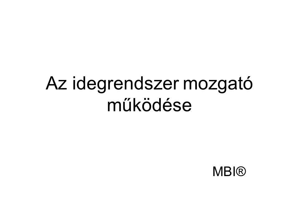 Az idegrendszer mozgató működése MBI®