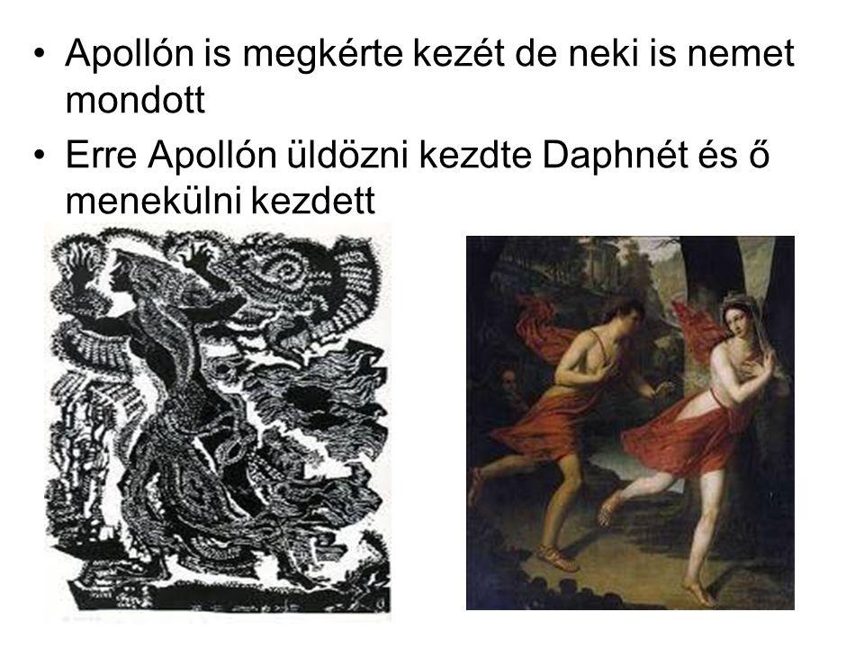 Apollón is megkérte kezét de neki is nemet mondott Erre Apollón üldözni kezdte Daphnét és ő menekülni kezdett