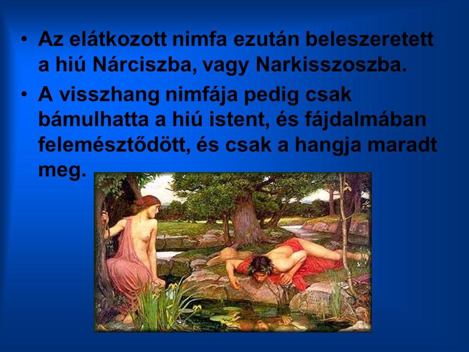 Az elátkozott nimfa ezután beleszeretett a hiú Nárciszba, vagy Narkisszoszba. A visszhang nimfája pedig csak bámulhatta a hiú istent, és fájdalmában f