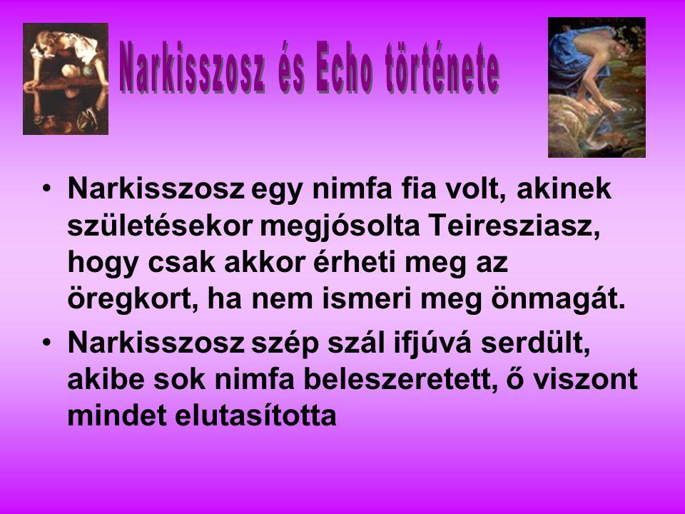 Narkisszosz egy nimfa fia volt, akinek születésekor megjósolta Teiresziasz, hogy csak akkor érheti meg az öregkort, ha nem ismeri meg önmagát.