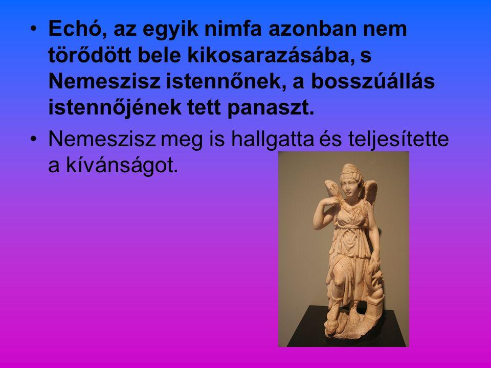 Echó, az egyik nimfa azonban nem törődött bele kikosarazásába, s Nemeszisz istennőnek, a bosszúállás istennőjének tett panaszt. Nemeszisz meg is hallg