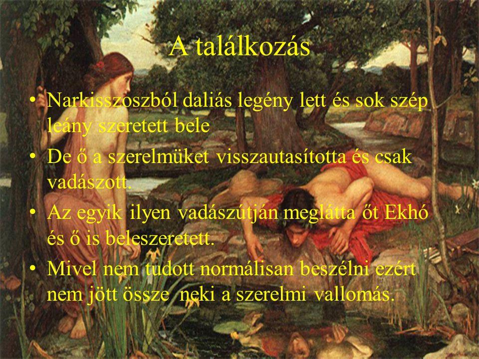 Erre Ekhó megátkozta Narkisszoszt, hogy legyen szerelmes önmagába.