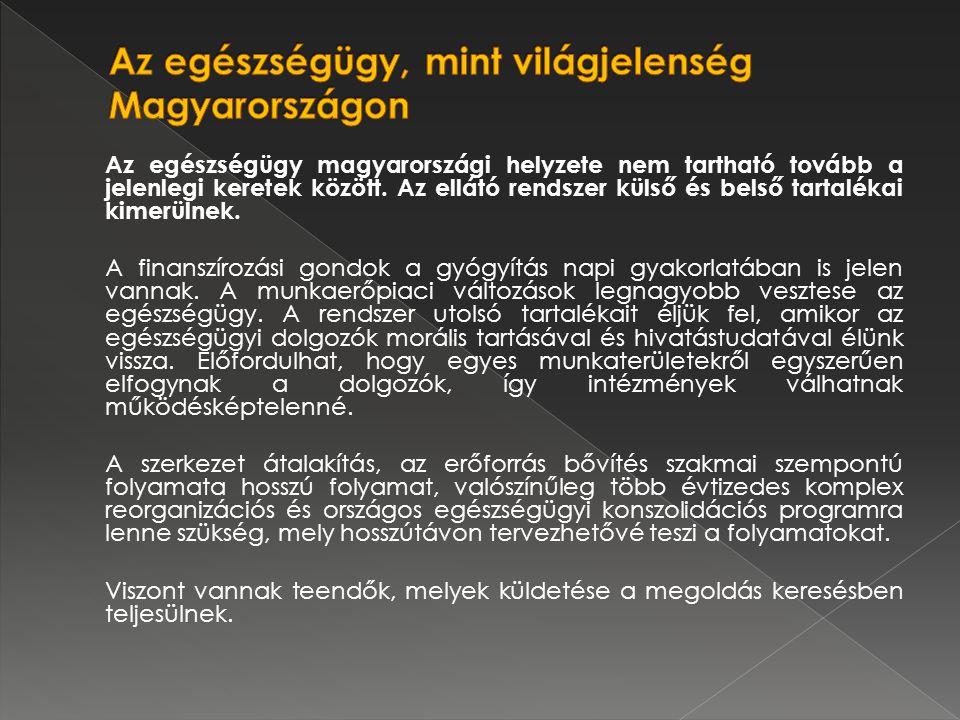 Az egészségügy magyarországi helyzete nem tartható tovább a jelenlegi keretek között.