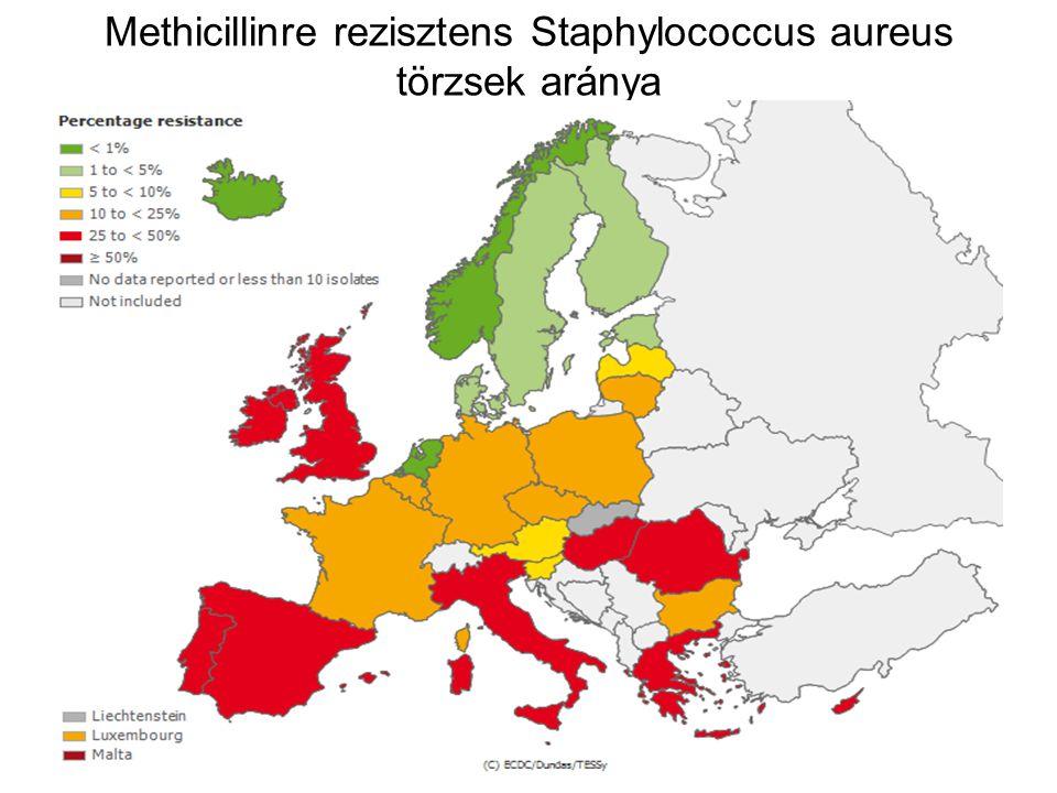 Methicillinre rezisztens Staphylococcus aureus törzsek aránya