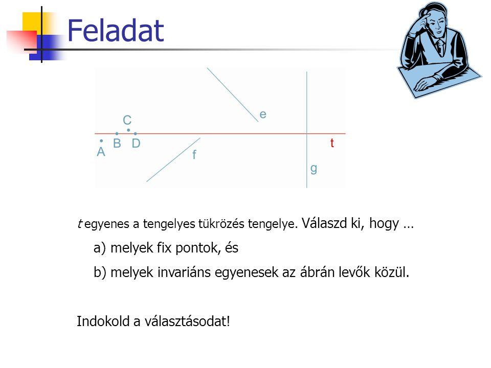 Feladat t egyenes a tengelyes tükrözés tengelye. Válaszd ki, hogy … a) melyek fix pontok, és b) melyek invariáns egyenesek az ábrán levők közül. Indok