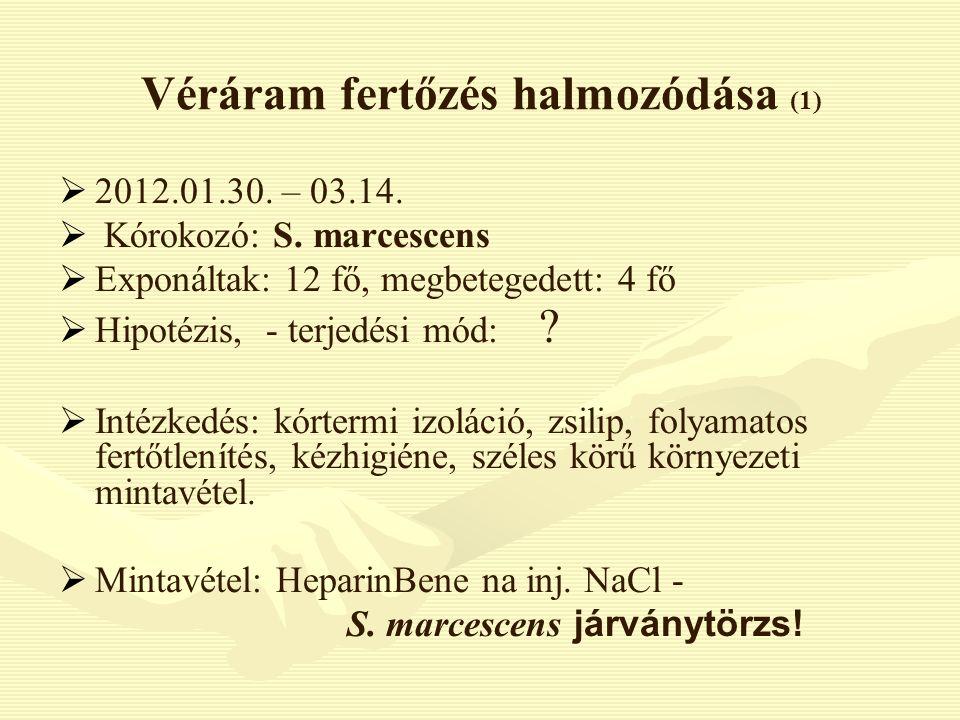 Véráram fertőzés halmozódása (1)   2012.01.30. – 03.14.   Kórokozó: S. marcescens   Exponáltak: 12 fő, megbetegedett: 4 fő   Hipotézis, - terj