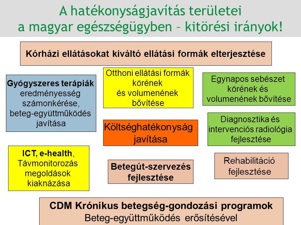 Költséghatékonyság javítása Rehabilitáció fejlesztése CDM Krónikus betegség-gondozási programok Beteg-együttműködés erősítésével Kórházi ellátásokat k
