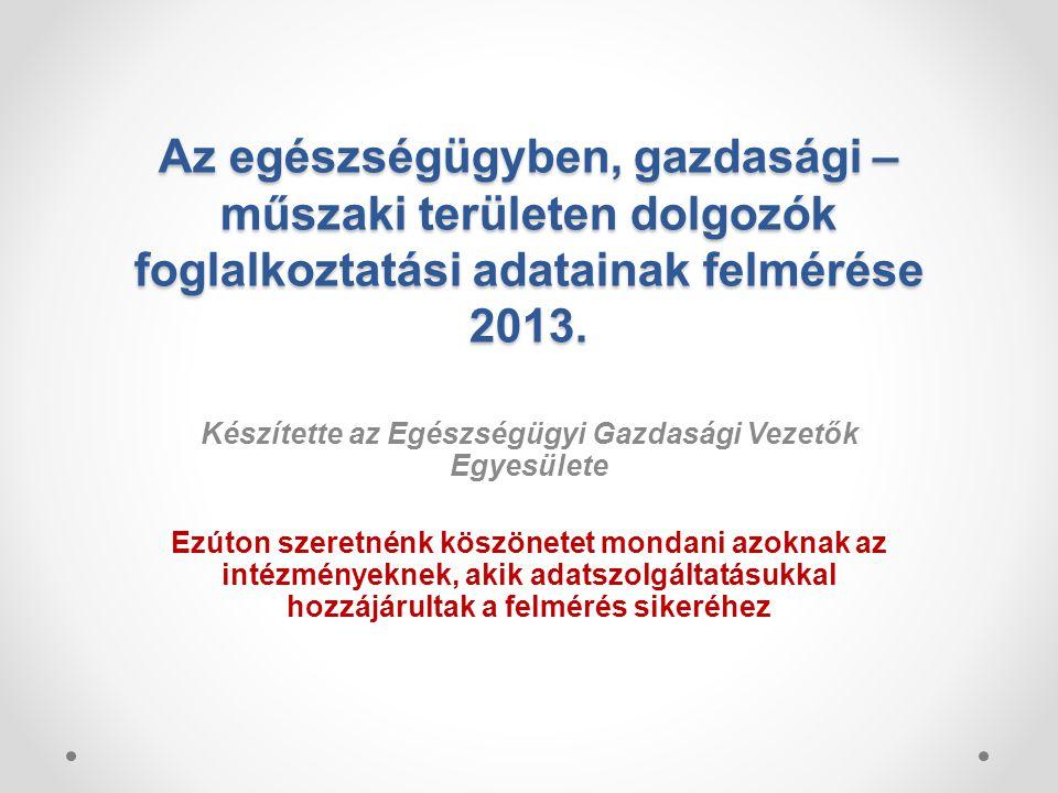 Az egészségügyben, gazdasági – műszaki területen dolgozók foglalkoztatási adatainak felmérése 2013.