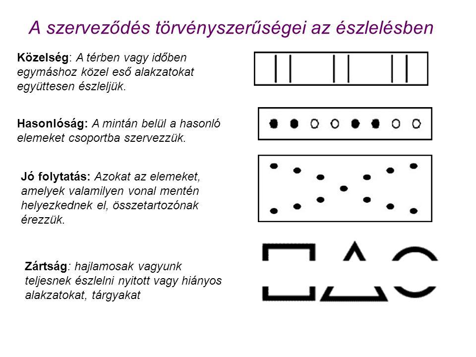 A szerveződés törvényszerűségei az észlelésben Közelség: A térben vagy időben egymáshoz közel eső alakzatokat együttesen észleljük. Hasonlóság: A mint