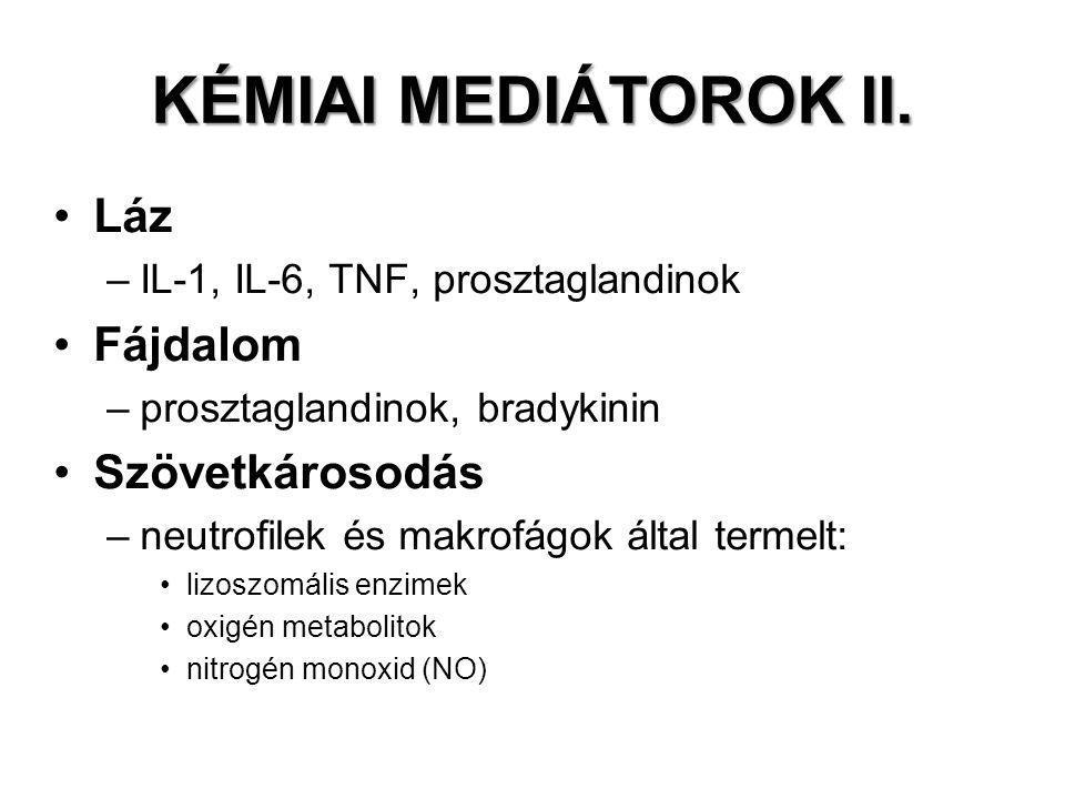 KÉMIAI MEDIÁTOROK II. Láz –IL-1, IL-6, TNF, prosztaglandinok Fájdalom –prosztaglandinok, bradykinin Szövetkárosodás –neutrofilek és makrofágok által t