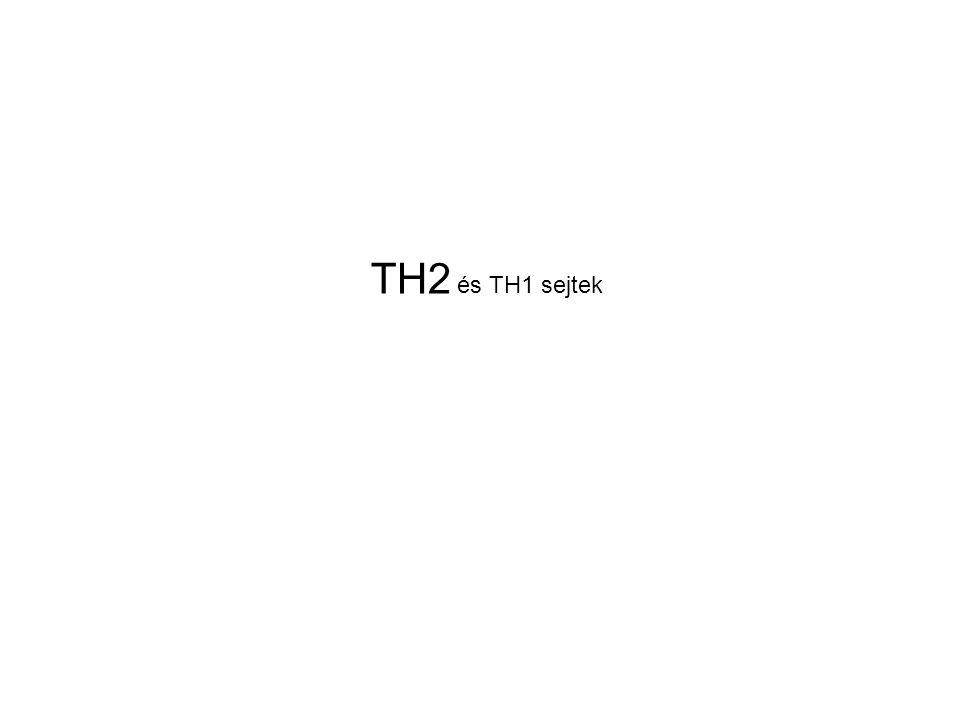 TH2 és TH1 sejtek