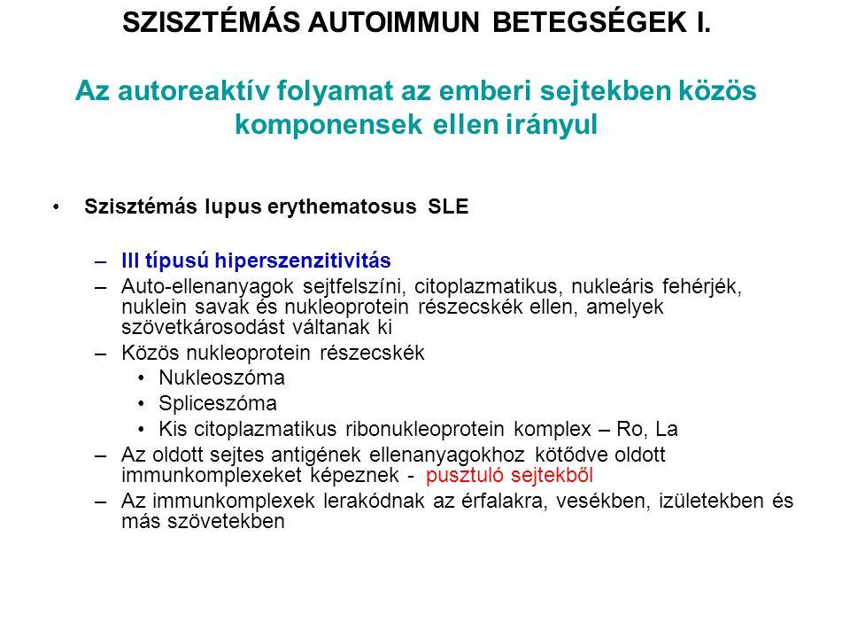 SZISZTÉMÁS AUTOIMMUN BETEGSÉGEK I. Az autoreaktív folyamat az emberi sejtekben közös komponensek ellen irányul Szisztémás lupus erythematosus SLE –III