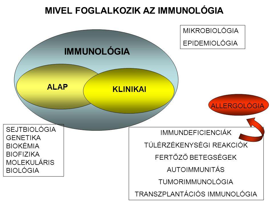 MIVEL FOGLALKOZIK AZ IMMUNOLÓGIA IMMUNOLÓGIA MIKROBIOLÓGIA EPIDEMIOLÓGIA SEJTBIOLÓGIA GENETIKA BIOKÉMIA BIOFIZIKA MOLEKULÁRIS BIOLÓGIA ALAP IMMUNDEFICIENCIÁK TÚLÉRZÉKENYSÉGI REAKCIÓK FERTŐZŐ BETEGSÉGEK AUTOIMMUNITÁS TUMORIMMUNOLÓGIA TRANSZPLANTÁCIÓS IMMUNOLÓGIA KLINIKAI ALLERGOLÓGIA