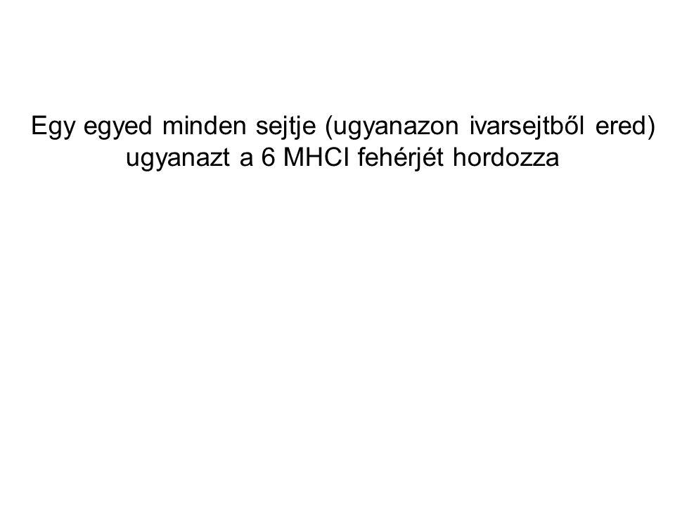 Egy egyed minden sejtje (ugyanazon ivarsejtből ered) ugyanazt a 6 MHCI fehérjét hordozza