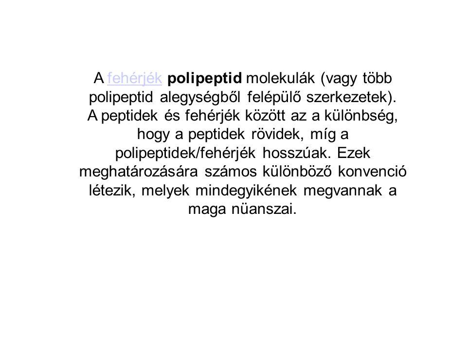 A fehérjék polipeptid molekulák (vagy több polipeptid alegységből felépülő szerkezetek).fehérjék A peptidek és fehérjék között az a különbség, hogy a