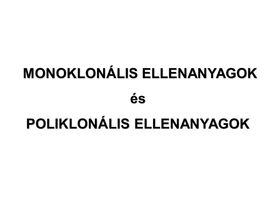 MONOKLONÁLIS ELLENANYAGOK és POLIKLONÁLIS ELLENANYAGOK