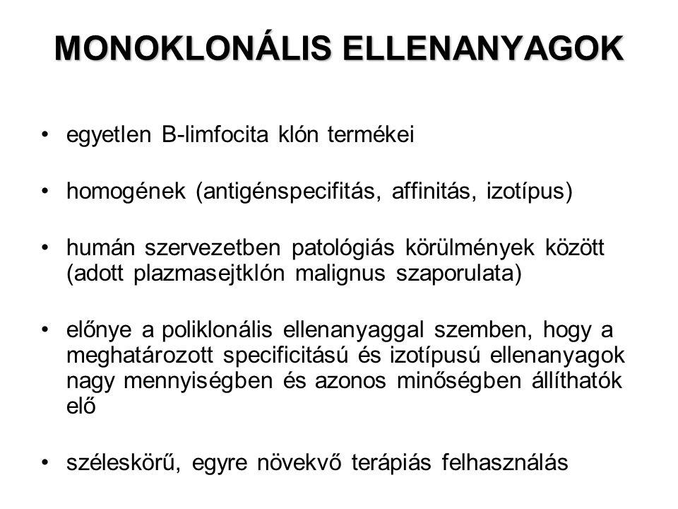 MONOKLONÁLIS ELLENANYAGOK egyetlen B-limfocita klón termékei homogének (antigénspecifitás, affinitás, izotípus) humán szervezetben patológiás körülmén