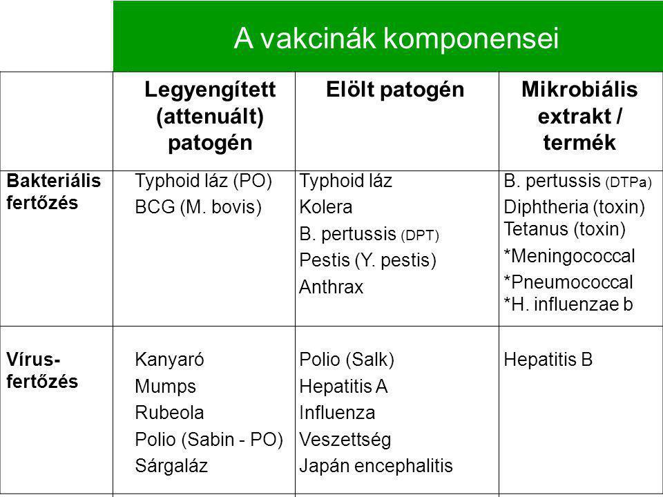 Legyengített (attenuált) patogén Elölt patogénMikrobiális extrakt / termék Bakteriális fertőzés Typhoid láz (PO) BCG (M. bovis) Typhoid láz Kolera B.