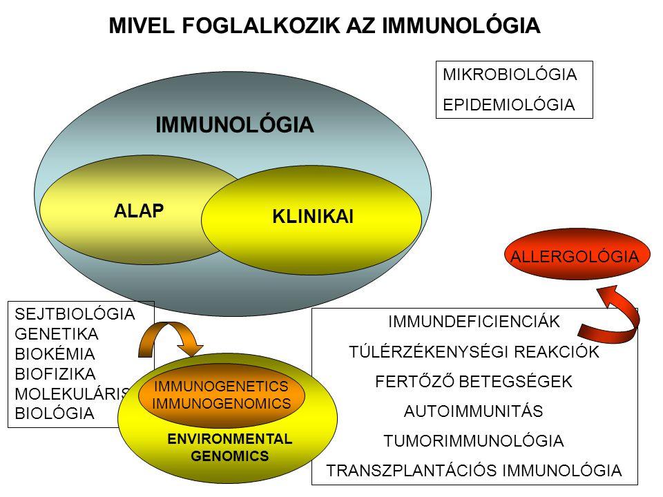 MIVEL FOGLALKOZIK AZ IMMUNOLÓGIA IMMUNOLÓGIA MIKROBIOLÓGIA EPIDEMIOLÓGIA SEJTBIOLÓGIA GENETIKA BIOKÉMIA BIOFIZIKA MOLEKULÁRIS BIOLÓGIA ALAP IMMUNDEFIC