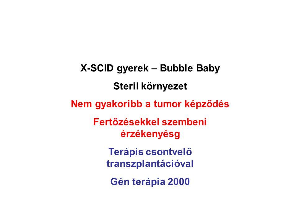 X-SCID gyerek – Bubble Baby Steril környezet Nem gyakoribb a tumor képződés Fertőzésekkel szembeni érzékenyésg Terápis csontvelő transzplantációval Gén terápia 2000