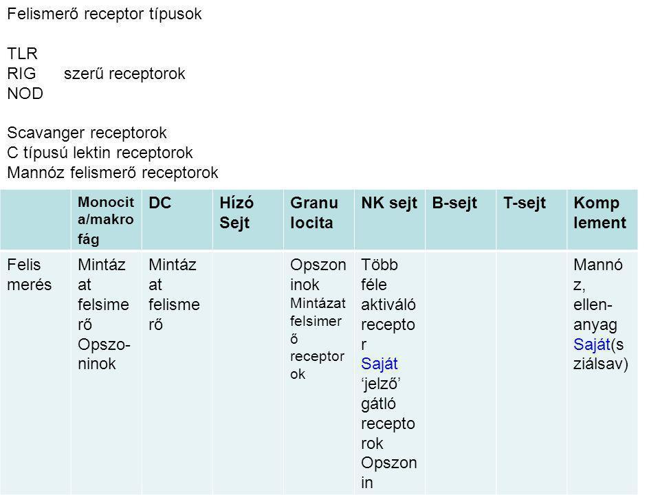 Monocit a/makro fág DCHízó Sejt Granu locita NK sejtB-sejtT-sejtKomp lement Felis merés kommu nikáció Effektor funkció Fagocit ózis, szolubil is mediát orok (ROS, NO, proteáz ) szolubil is mediát orok Fagocit ózis, szolubil is mediát orok (ROS, NO, proteáz ) Citotoxi kus ADCC Komple ment mediált lizis Kék—az opszonizáció (ellenanyag/koplement) által fokozott effektor funkciók Effektor funkciók: Közvetlen a patogénre irányuló: Fagocitózis, szolubilis mediátorok NK sejt Komplement komplement A fertőzőtt sejt elpusztítása: