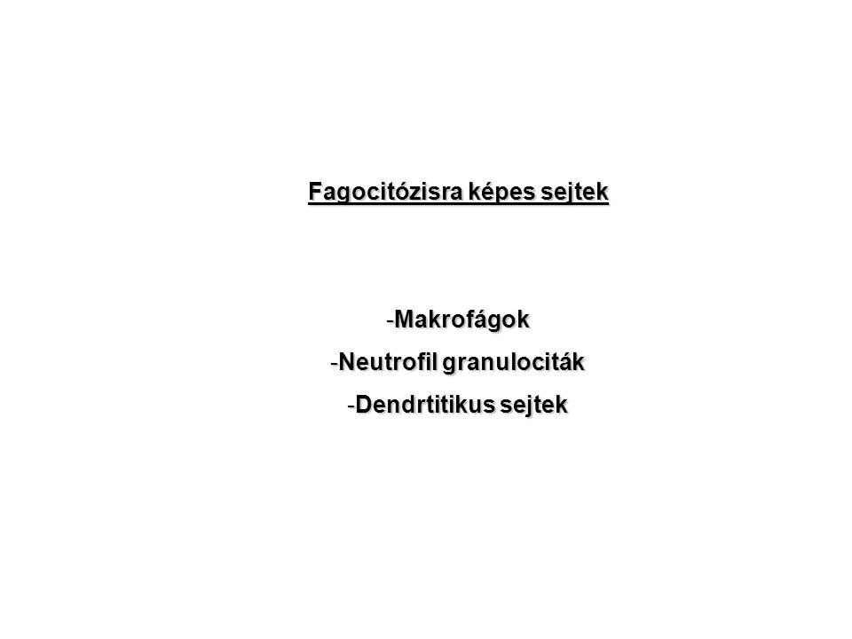 Fagocitózisra képes sejtek -Makrofágok -Neutrofil granulociták -Dendrtitikus sejtek