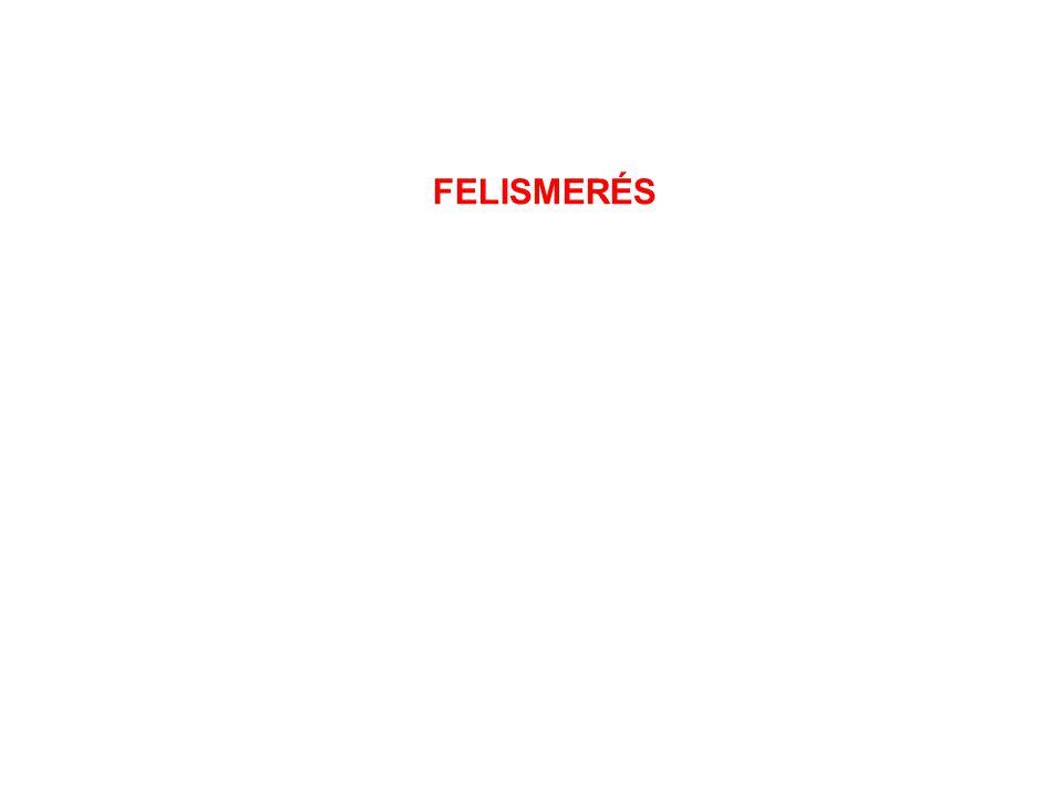 FELISMERÉS