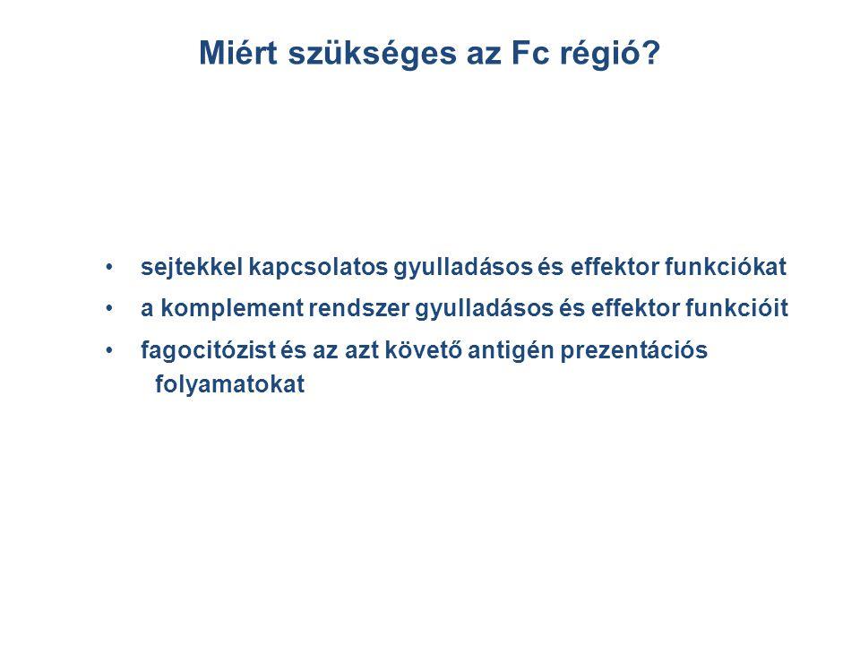 Miért szükséges az Fc régió? sejtekkel kapcsolatos gyulladásos és effektor funkciókat a komplement rendszer gyulladásos és effektor funkcióit fagocitó