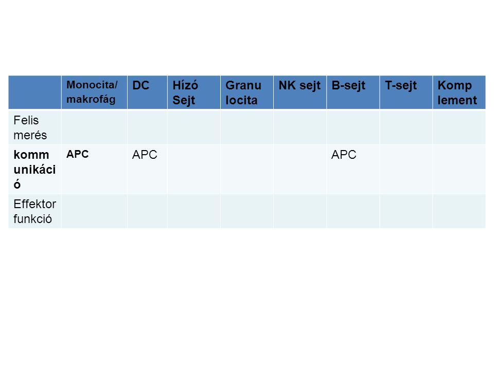Monocita/ makrofág DCHízó Sejt Granu locita NK sejtB-sejtT-sejtKomp lement Felis merés komm unikáci ó APC Effektor funkció
