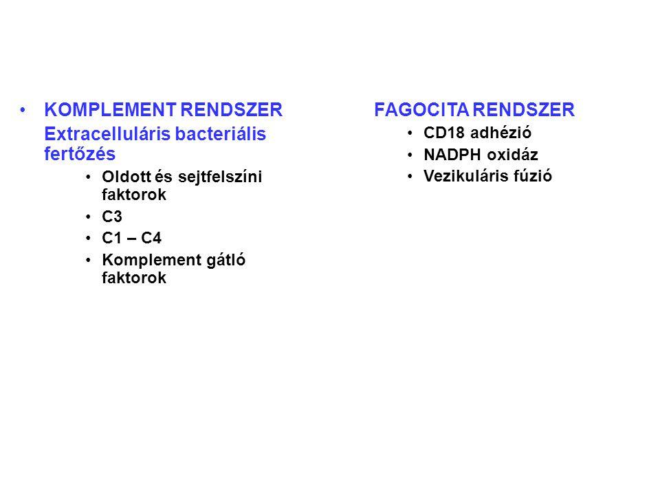 KOMPLEMENT RENDSZER Extracelluláris bacteriális fertőzés Oldott és sejtfelszíni faktorok C3 C1 – C4 Komplement gátló faktorok FAGOCITA RENDSZER CD18 adhézió NADPH oxidáz Vezikuláris fúzió