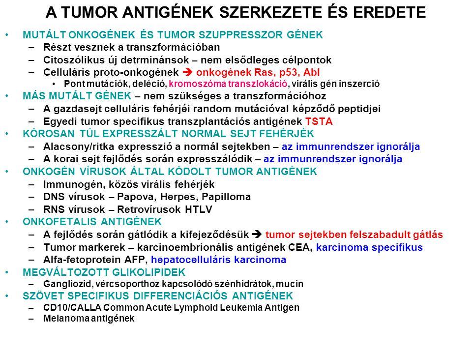 A tumor-specifikus T-sejtek dendritikus sejtek általi aktivációja. Cross-presentation