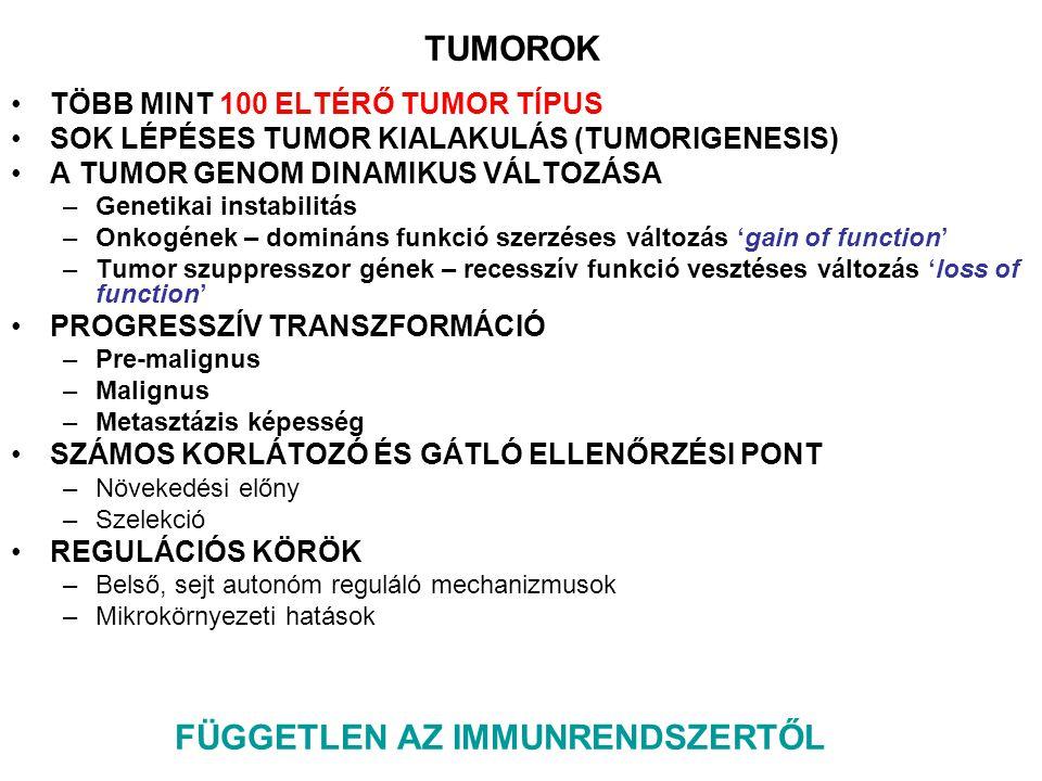 ONKOGÉNEK AKTIVÁCIÓJA TUMOR SZUPRESSZOR GÉNEK INAKTIVÁCIÓJA Korlátlan szaporodó képesség Folyamatos angiogenezis Szöveti migráció és metasztázis SZERZETT SAJÁTSÁGOK Ismert szabályozásai útvonalak károsodása Az immunrendszer számára felismerhető közös tumor-asszociált antigének (TAA) és egyedi tumor- specifikus antigének (TSA) jelennek meg POTENCIÁLIS IMMUNTERÁPIÁS CÉLPONT Önálló növekedési faktor szignálok Érzéketlenség a növekedést gátló faktorokkal szemben Apoptózis elkerülése Szöveti sejt Tumor sejt Hanahan D és Weinberg RA 2000 Cell TUMORIGENEZIS Genetikai betegség, bármely szövet típust érintheti, monoklonális eredet