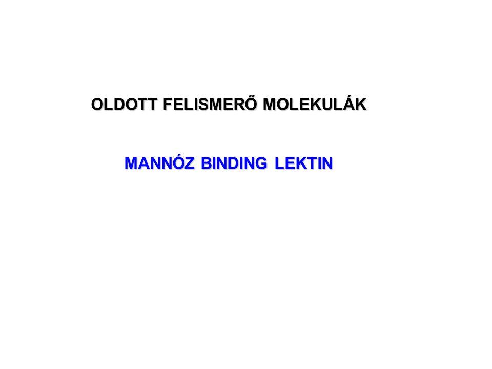 OLDOTT FELISMERŐ MOLEKULÁK MANNÓZ BINDING LEKTIN