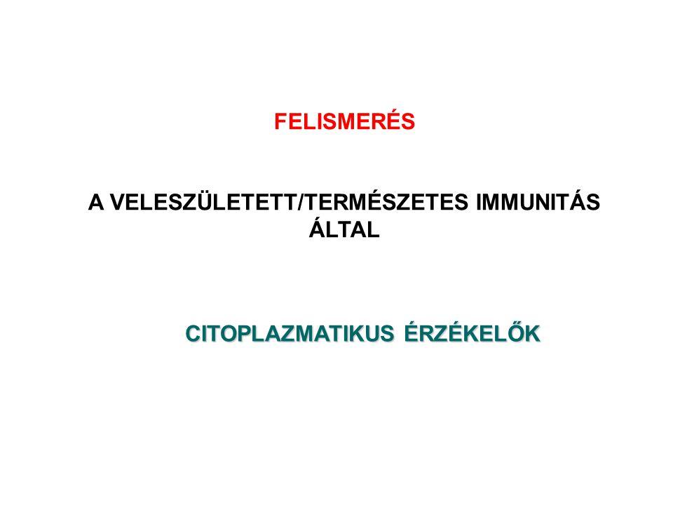 TLR CITOPLAZMA CARD-CARD-helikase RLH VESZÉLYT ÉRZÉKELŐ KONZERVÁLT RECEPTOROK NLR Leucin rich repeats Nucleotide binding domain MEMBRÁNTLR3Fibroblaszt Epitél sejt DC NLRP1 – ASC NLRP3 – ASC – CARDINAL NBD NC PYR CARD NOD1/2, IPAF/NLRC4 BIR IPAF NBD NBD