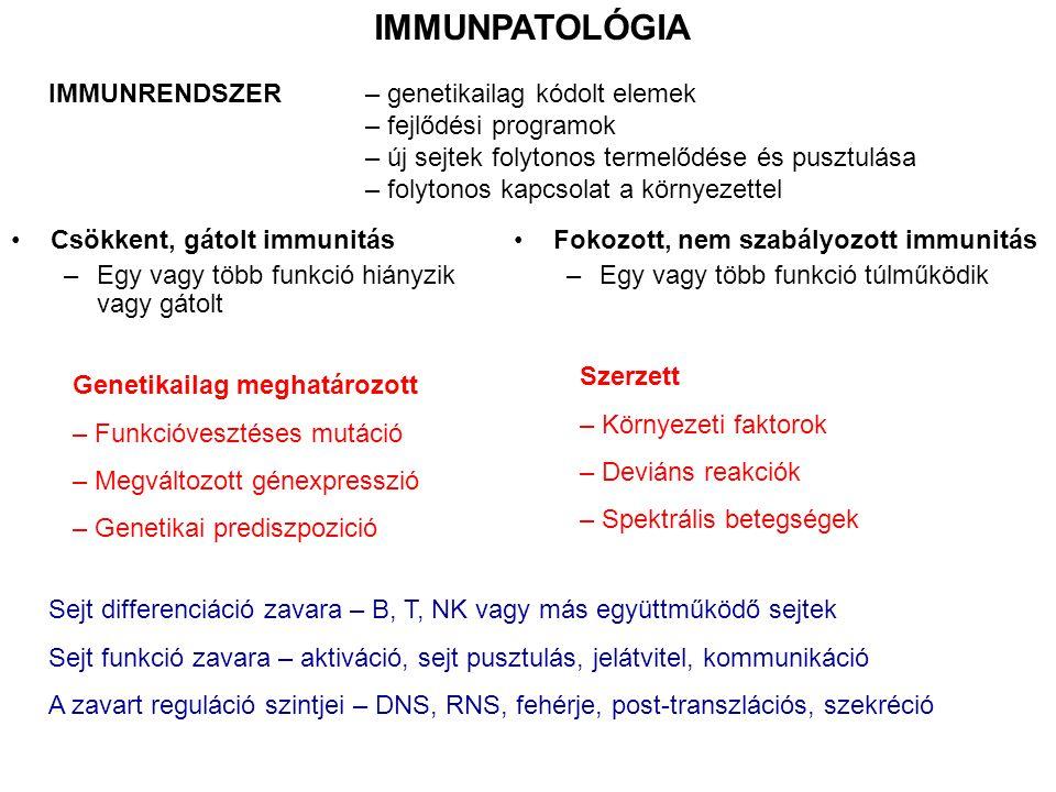 IMMUNPATOLÓGIA Csökkent, gátolt immunitás –Egy vagy több funkció hiányzik vagy gátolt Fokozott, nem szabályozott immunitás –Egy vagy több funkció túlm