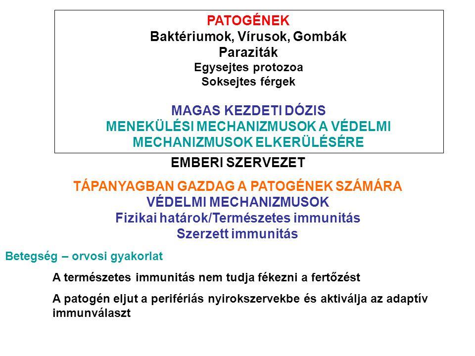 PATOGÉNEK Baktériumok, Vírusok, Gombák Paraziták Egysejtes protozoa Soksejtes férgek MAGAS KEZDETI DÓZIS MENEKÜLÉSI MECHANIZMUSOK A VÉDELMI MECHANIZMU