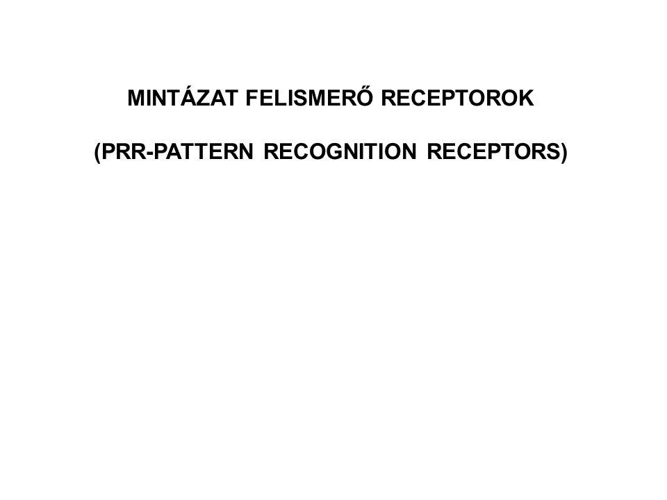 MINTÁZAT FELISMERŐ RECEPTOROK (PRR-PATTERN RECOGNITION RECEPTORS)