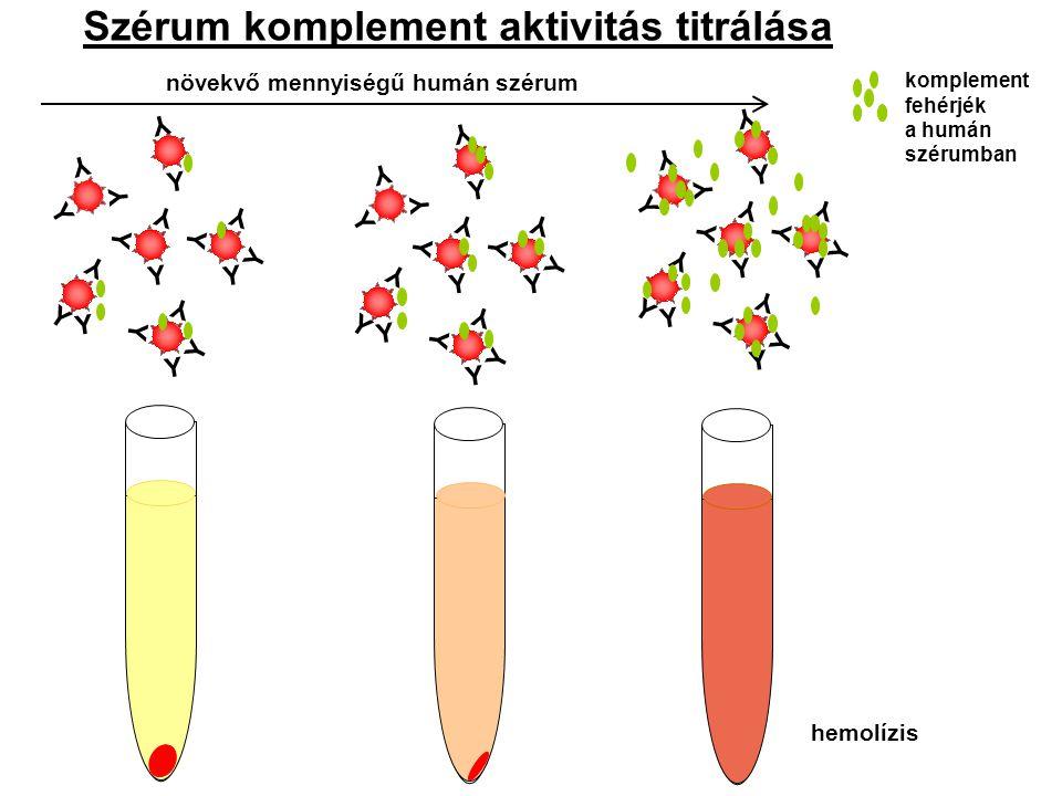 Szerológiai módszerek alkalmazása Immundiffúzió: pl: bakteriális, virális és gomba antigének jellemzésére - radiális egyszerű (Mancini-módszer): antigének mennyiségének összehasonlító vizsgálata, szérum fehérjék ( immunoglobulin izotípusok [IgM, IgG, IgA], akut fázis fehérjék, transzferrin, komplement komponensek) mennyiségi meghatározása különböző testfolyadékokban, ellenanyagok mennyiségi meghatározása - radiális kettős (Ouchterlony módszer): precipitációs ekvivalencia zóna becslése, precipitáló ellenanyagok relatív szintjének (titerének) meghatározása, állandó ellenanyag koncentráció mellett az antigén mennyisége is megbecsülhető Elektroforézis: - immunoelektroforézis: szérum fehérjék frakciókra való elválasztása, plazmasejt diszkráziák (mielóma multiplex, Waldenström makroglobulinémia, elsődleges amiloidózis) során képződő, monoklonális eredetű immunoglobulinok kimutatása - rakéta elektroforézis: antigén/ellenanyag koncentráció meghatározása - két-dimenziós elektroforézis: elektroforetikus mobilitás alapján szétválasztott frakciók (pl: szérum fehérjék) koncentrációjának meghatározása, szérum, vizelet, cerebrospinális folyadék fehérjeösszetételének kvantitatív és kvalitatív vizsgálata Turbidimetria: ( érzékenység: 50 µg/ml) szérumban, liquorban nagy mennyiségben jelen lévő fehérjék vizsgálata Nefelometria: (érzékenység: 1 µg/ml) kis koncentrációjú szérum és liquor fehérjék, gyógyszer szintek mérése