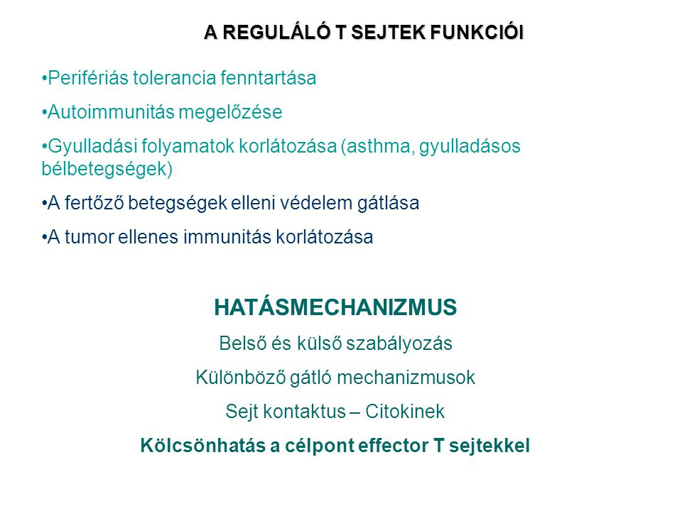 A REGULÁLÓ T SEJTEK FUNKCIÓI Perifériás tolerancia fenntartása Autoimmunitás megelőzése Gyulladási folyamatok korlátozása (asthma, gyulladásos bélbetegségek) A fertőző betegségek elleni védelem gátlása A tumor ellenes immunitás korlátozása HATÁSMECHANIZMUS Belső és külső szabályozás Különböző gátló mechanizmusok Sejt kontaktus – Citokinek Kölcsönhatás a célpont effector T sejtekkel