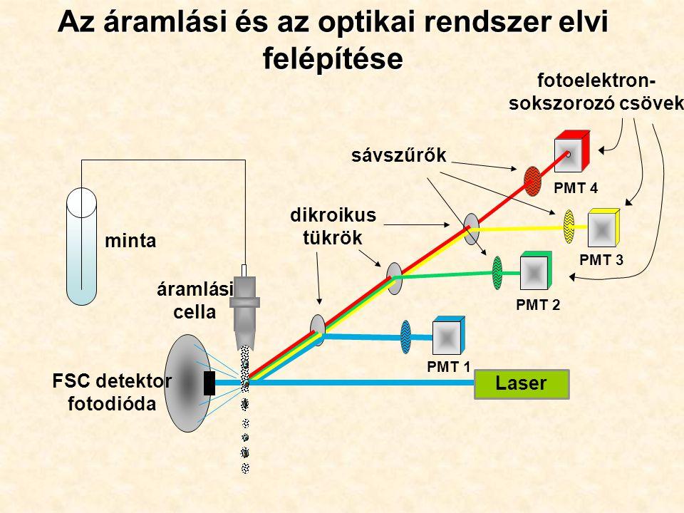 Az áramlási és az optikai rendszer elvi felépítése PMT 1 PMT 2 PMT 4 dikroikus tükrök sávszűrők Laser áramlási cella PMT 3 minta FSC detektor fotodióda fotoelektron- sokszorozó csövek