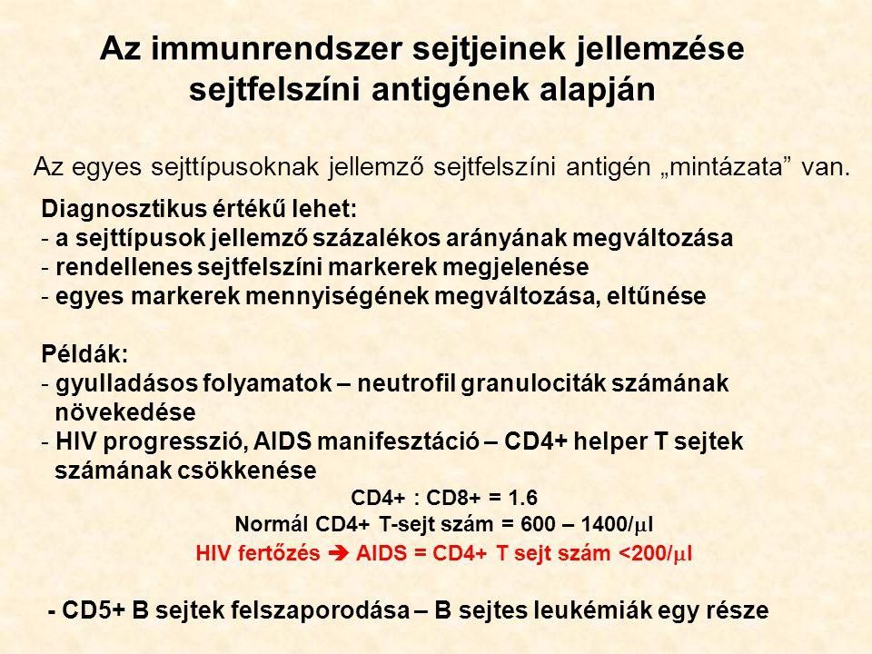 """Az immunrendszer sejtjeinek jellemzése sejtfelszíni antigének alapján Az egyes sejttípusoknak jellemző sejtfelszíni antigén """"mintázata"""" van. Diagnoszt"""