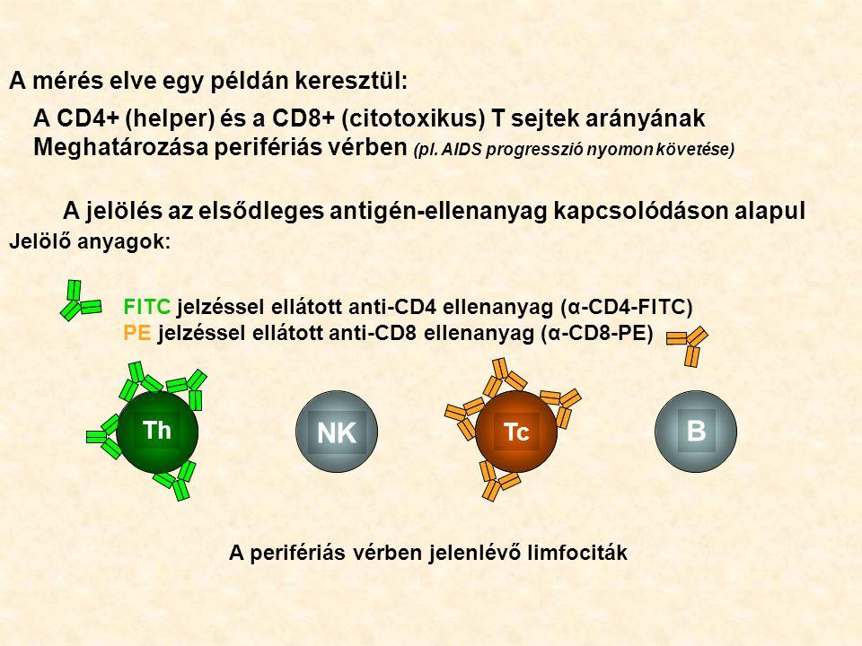 B A jelölés az elsődleges antigén-ellenanyag kapcsolódáson alapul NK Th Tc A mérés elve egy példán keresztül: A CD4+ (helper) és a CD8+ (citotoxikus) T sejtek arányának Meghatározása perifériás vérben (pl.