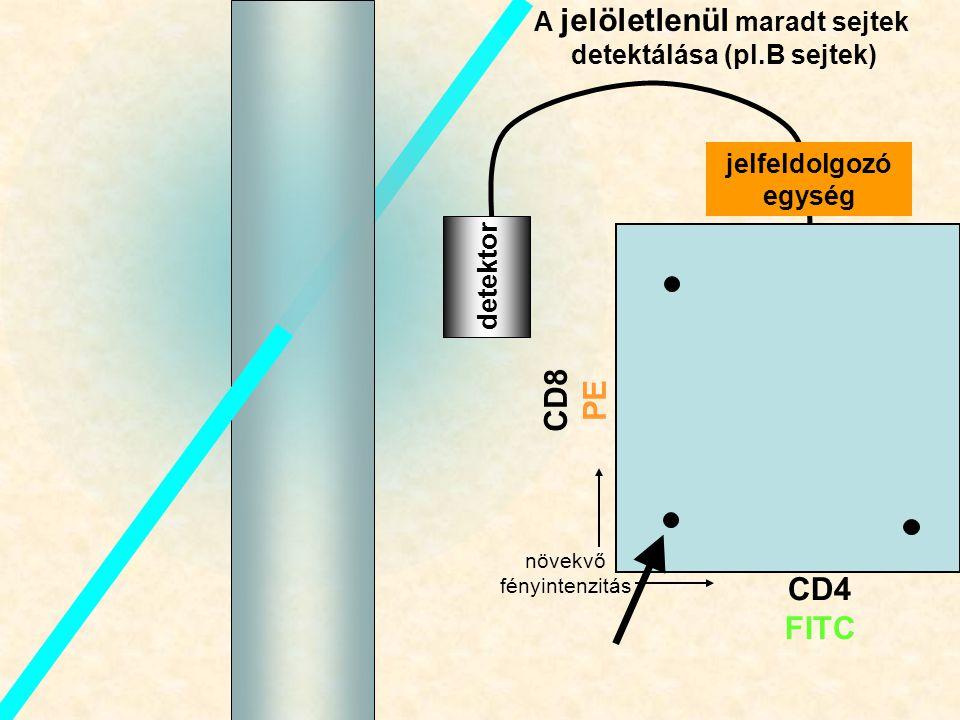B detektor A jelöletlenül maradt sejtek detektálása (pl.B sejtek) CD8 PE CD4 FITC jelfeldolgozó egység növekvő fényintenzitás