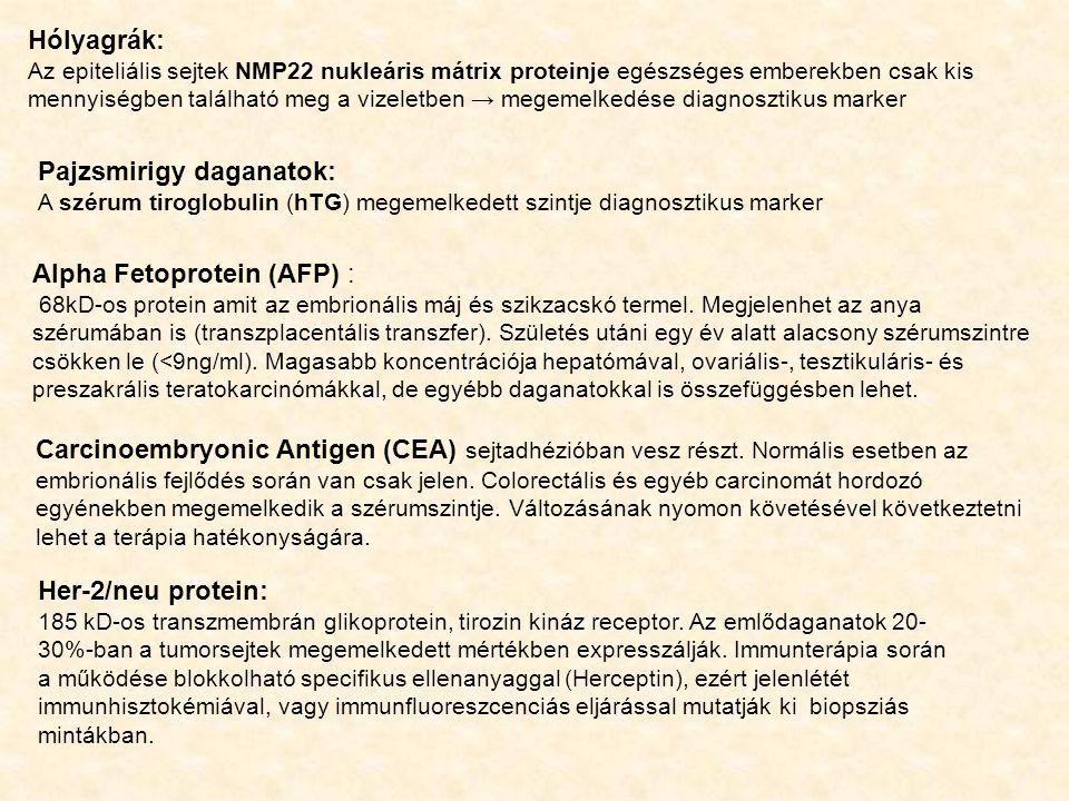 Hólyagrák: Az epiteliális sejtek NMP22 nukleáris mátrix proteinje egészséges emberekben csak kis mennyiségben található meg a vizeletben → megemelkedése diagnosztikus marker Pajzsmirigy daganatok: A szérum tiroglobulin (hTG) megemelkedett szintje diagnosztikus marker Alpha Fetoprotein (AFP) : 68kD-os protein amit az embrionális máj és szikzacskó termel.